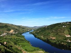 Magnificent Portugal - via Talk-A-Vino 24.05.2015 | A beautiful country with wonderful people, great wines and delicious food. Photo: Douro Valley