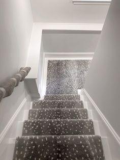 Animal Print Carpet Runners for Stairs . Animal Print Carpet Runners for Stairs . Carpet Stair Treads, Stair Rugs, Carpet Stairs, Carpet Runners For Stairs, Wood Railings For Stairs, Rustic Stairs, Navy Stair Runner, Stair Runners, Hallway Runner