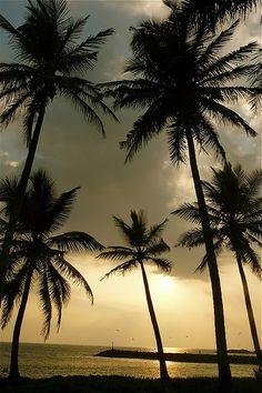 Ambalangoda, Sri Lanka #VisitSriLanka