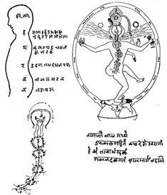 MULTI-FACETED VEDIC HINDUISM
