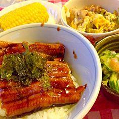 少~しのご飯に鰻を乗っけて頂きました - 15件のもぐもぐ - 鰻丼 ミョウガと胡瓜と紫蘇の和え物 ゴーヤチャンプルー by lalanoir