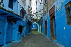 Experience cartoonish splendor on the blue streets of Chefchaouen in Morocco.