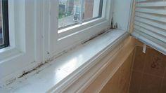 Window Moldings On Pinterest Window Molding Trim
