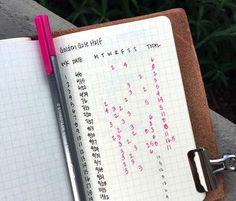 Rosanna's journal
