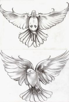 Tattoo Doves by can find Dove tattoos and more on our website.Tattoo Doves by Dove Tattoos, Body Art Tattoos, New Tattoos, Sleeve Tattoos, Tattoos For Guys, Wing Tattoos, Peace Tattoos, Celtic Tattoos, Tattoo Design Drawings