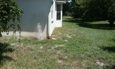 The Best Sprinkler Repair Business is American Property Maintenance you always get Free Estimates and all work is warrantied.
