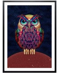 Owl 2-Framed Art Print