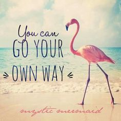 You dont need approval from anyone self help розовые фламинг Flamingo Craft, Flamingo Decor, Pink Flamingos, Flamingo Birthday, Flamingo Party, Flamingo Pictures, Flamingo Wallpaper, Pink Bird, My Spirit Animal