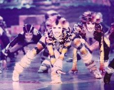 Cats Musical, Musical Theatre, Jellicle Cats, Cat Movie, Cool Girl, Theater, Broadway, Concert, Girls