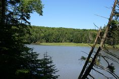 Strathgartney Provincial Park of Route 1 in PEI