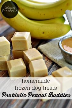 Probiotic Peanut Buddies Here are some probiotic-rich homemade frozen dog treats to help cool off your furry friends! Made with only whole food ingredients, your puppies will be nourished while having their own sort of popsicle! I call these Probiotic P Dog Biscuit Recipes, Dog Treat Recipes, Healthy Dog Treats, Whole Food Recipes, Dog Food Recipes, Kfc Biscuit, Homemade Dog Cookies, Homemade Dog Food, Dog Popsicles