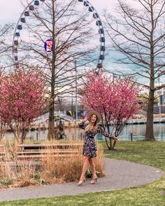 Visiting Navy pier and Chicago during the spring is a dream! I love have the pink trees frame the Ferris wheel.