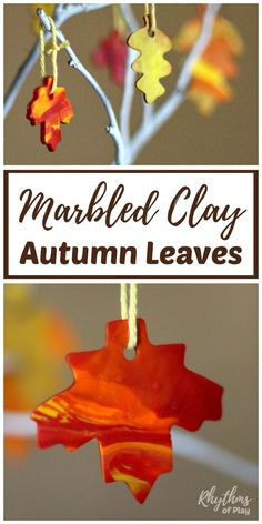 Marbled Clay Autumn Leaves Fall Craft is for Kids, Teens, and Adults! Clay fall leaves can be used as ornaments on bare branches or made into wreaths and garlands. They also make a fun gift tag for a fall birthday. If your kids like to bake cookies, they will love making polyform clay autumn leaves!
