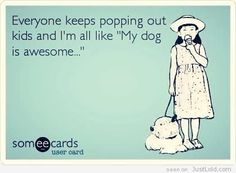 It's true. And my dogs are awesome!