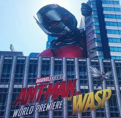 Wasp examines marvel pussy avengers lesbian porn