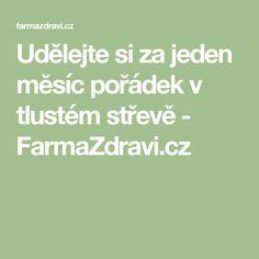 Udělejte si za jeden měsíc pořádek v tlustém střevě - FarmaZdravi.cz
