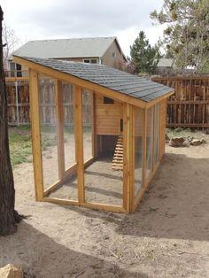 Walk In Chicken Coop, Easy Chicken Coop, Diy Chicken Coop Plans, Chicken Pen, Portable Chicken Coop, Chicken Cages, Backyard Chicken Coops, Building A Chicken Coop, Chickens Backyard