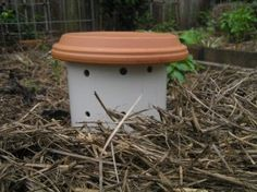 Garden Earthworm Tower:  Happy earthworms=Happy garden. Fed w/kitchen compost. B.I'Me