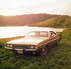 1974 Dodge Challenger, cartype.com
