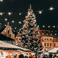 Christmas Feeling, Cozy Christmas, Christmas Time, Bruges Christmas, Christmas In The City, Xmas, Christmas Collage, Christmas Photos, Tumblr Christmas Pictures