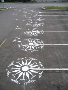 Parking lot flowers