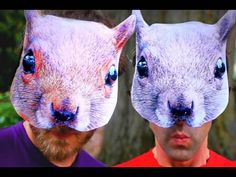 Squirrel Rights Song. Rhett and Link are such nuts. Pun intended. I actually sing this all the time.