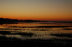 Lowcountry Sunrise