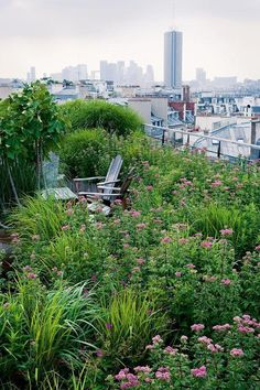 Most Design 75 Inspiring Rooftop Terrace Design Ideas Design House Decor Terence Conran, Rooftop Terrace Design, Terrace Garden, Potted Garden, Amazing Gardens, Garden Inspiration, Garden Ideas, Habitats, Garden Landscaping