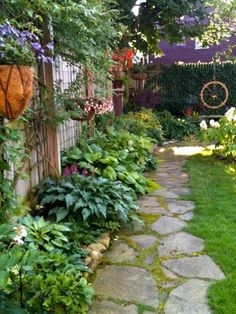 Hosta pathway in a narrow side yard This is pretty much what I have i mind, but with the gardens on both sides