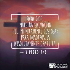 1 Pedro 1:3 Bendito el Dios y Padre de nuestro Señor Jesucristo, que según su grande misericordia nos hizo renacer para una esperanza viva, por la resurrección de Jesucristo de los muertos.♔