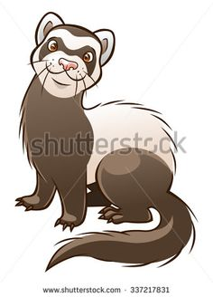 Vector cartoon funny ferret isolated on the white background.  - stock vector