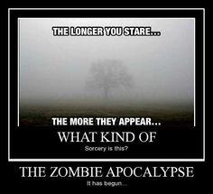 The Zombie Apocalypse!! Ruun!!!
