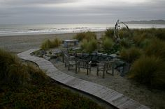 Bright Beach House - eclectic - landscape - san francisco - Golden Gate Palms and Exotics