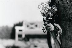 Zuzanka a Jeník - Svatební foto Novohradské hory (83) Flowers, Plants, Photography, Photograph, Fotografie, Photoshoot, Plant, Royal Icing Flowers, Flower