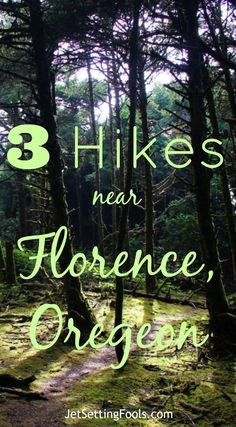 3 Easy Hikes near Florence, Oregon - Jetsetting Fools Of the 3 easy hikes near Florence, Oregon, one led to waterfalls, another down to an expansive beach and the third to the dramatic cliffs on the coast. Oregon Coast Hikes, Utah Hikes, Oregon Vacation, Oregon Travel, Travel Portland, Hiking Spots, Hiking Trails, Pacific Crest Trail, Pacific Northwest