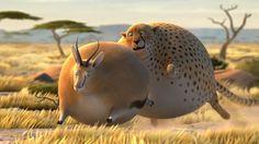 Animation : Rollin Safari