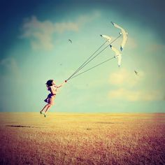 Fly fly fly     #