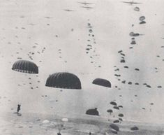 British soldier killed during WWII is finally laid to rest nine years after his remains were found in unmarked field Allied paratroopers touch down in the Netherlands during Operation Market Garden Siegfried Line, Operation Market Garden, D Day Landings, 101st Airborne Division, Pearl Harbor Attack, British Soldier, Battle Of Britain, Paratrooper, Military History