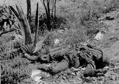 Dead Fallschirmjager, Crete 1941 - pin by Paolo Marzioli
