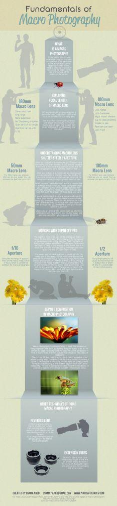Aprende fotografía: Objetivos macro #infografia #infographic