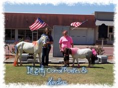 Lil Bitty Corral Ponies & Handlers