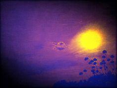 Digital Art Android Mobile Phone: Flores al Sol de La Noche...!!! En El Parque Natural de la Breña y Marismas de Barbate... La Janda Litoral en Cádiz.  Estoy en Google+: http://gplus.to/ManuelAcebedo  Android Photographer, Bloguero, Google+ Evangelist, Viajero, Escritor de Artículos, Fotografía y Vídeo Documental Periodístico… By Manuel Acebedo: El Viajero de La Janda Litoral.  PD.: Foto Tomada y Editada Con mi Android Mobile Phone con las Apps Para Android Pixlr-o-matic y Aviary.