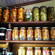 Adventures in pressure canning - Milkwood: permaculture courses, skills + stories Stocking Pantry, Canning Apple Pie Filling, Permaculture Courses, Canning Apples, Fig Jam, Food Charts, Pressure Canning, Fermented Foods, Preserving Food