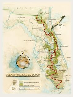 Route Map – The Florida Wildlife Corridor