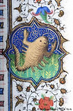 Book of Hours, MS M.1000 fol. 10r - Zodiac Sign: Scorpio -- Scorpion.