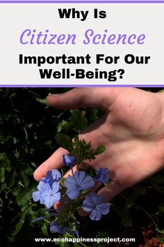 Citizen science ideas for children to reduce stress and improve wellbeing. Educational Activities, Learning Resources, Family Activities, Parenting Quotes, Parenting Advice, Kids And Parenting, Citizen Science, Green Living Tips, Natural Parenting
