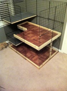House and Play Area Ideas - North Texas Rabbit Sanctuary
