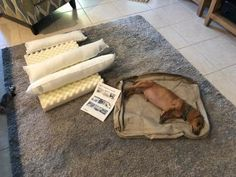 Find the best Therapeutic Dog Couch at L. Our high quality home goods are designed to help turn any space into an outdoor-inspired retreat. Corner Nook, Dog Couch, Foam Panels, Dog Ages, Wash N Dry, Dachshunds, Innovation Design, Stay Warm, Dog Life