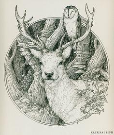 drawing Illustration art owl deer antlers barn owl dessin Stag cerf chouette bois biche chouette effraie