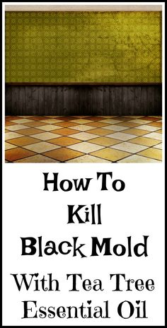 How to use tea tree essential oil to kill mold.